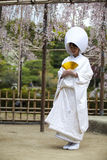 日本传统婚礼礼服 免版税库存图片
