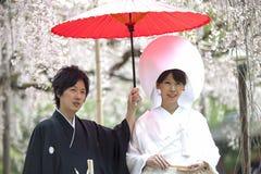 日本传统婚礼costum 免版税图库摄影