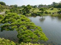 日本公园 免版税图库摄影