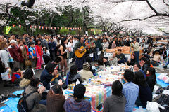 日本公园ueno 图库摄影