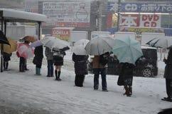 日本冬天 免版税库存图片