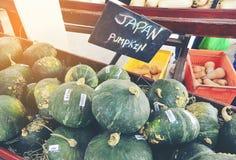 日本南瓜 图库摄影