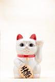 日本召唤的猫叫Manekineko 图库摄影