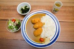 日本咖喱猪肉 免版税库存图片