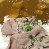日本咖喱米 免版税库存图片