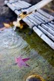 日本喷泉 免版税库存照片