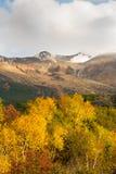日本国家公园Daisetsuzan 免版税库存照片