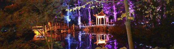 日本塔和人行桥 图库摄影