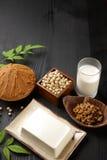 日本大豆被处理的食物 免版税库存图片