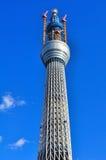 日本天空sumida东京塔结构树病区 库存照片