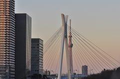 日本天空sumida东京塔结构树病区 免版税库存照片