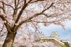 日本姬路城堡 免版税库存图片