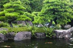 日本姬路姬路Koko en庭院筑成池塘用Koi鲤鱼 库存图片