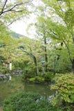 日本庭院公园 库存照片