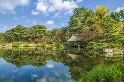 日本庭院和反射 免版税库存照片