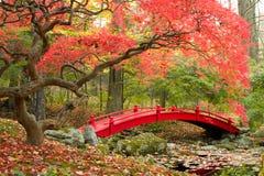 日本庭院和红色桥梁 免版税库存图片