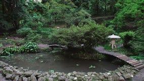 日本庭院在公园、池塘有漂浮的红色鲤鱼,走的桥梁、高大的树木和蕨 股票视频