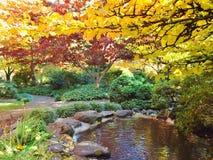 日本庭院在秋天的氧化锂公园 免版税库存照片