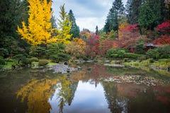 日本庭院在秋天 库存照片