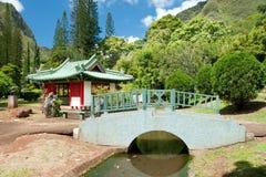 日本庭院在Iao谷毛伊的夏威夷国家公园 库存照片
