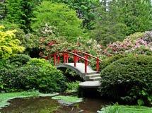 日本庭院红色桥梁花灌木 库存照片