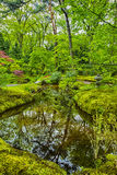 日本庭院美丽如画的风景海牙& x28的; 小室Haag& x29;在荷兰 免版税库存照片