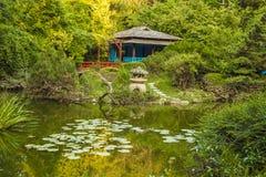 日本庭院 图库摄影