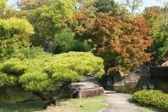 日本式庭院 库存照片