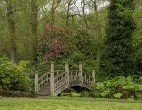 日本式桥梁在英国庭院里 免版税库存图片