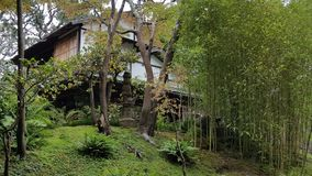 日本房子在有树和竹子的庭院里 免版税库存图片
