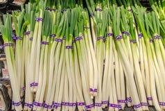 日本捆成一束的葱待售在食物市场上 免版税库存照片
