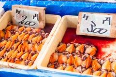 日本新壳在新鲜市场上 库存照片