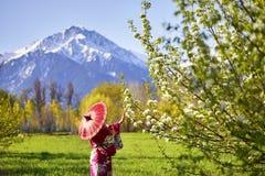 日本服装的妇女在樱花 库存照片