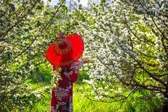 日本服装的妇女在樱花 库存图片