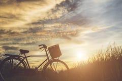日本样式经典自行车剪影在领域的 库存照片