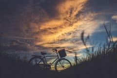 日本样式经典自行车剪影在领域的 库存图片