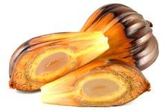 日本棕榈树果子,泰国 免版税库存照片