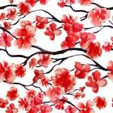 日本樱桃分支春天开花,红色佐仓树无缝的水彩样式 传染媒介例证,为印刷品准备 免版税库存图片