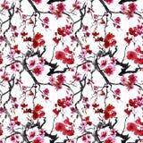 日本樱桃树。无缝的背景。 免版税库存图片