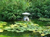 日本池塘zilker 库存照片