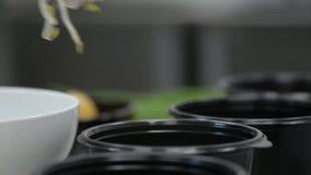 日本汤 准备拉面用酱油根据汤 股票视频