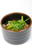 日本沙拉 免版税库存图片