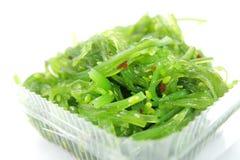 日本海杂草沙拉 免版税图库摄影