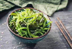 日本海草沙拉 免版税库存照片