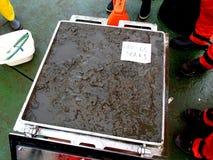 日本海/俄罗斯- 2013年11月30日:箱子核心取样器得到了海底泥的一个好片断 库存图片