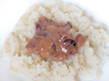 日本烹调,在米的盐味的乌贼胆量 免版税库存图片