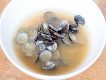 日本烹调, shijimi蛤蜊大酱汤 免版税图库摄影