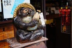 日本狸 库存照片