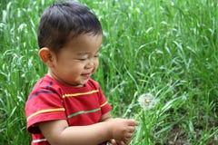 日本男孩吹的蒲公英种子 免版税库存图片
