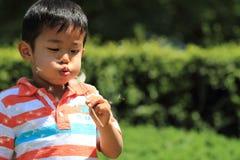 日本男孩吹的蒲公英种子 免版税图库摄影